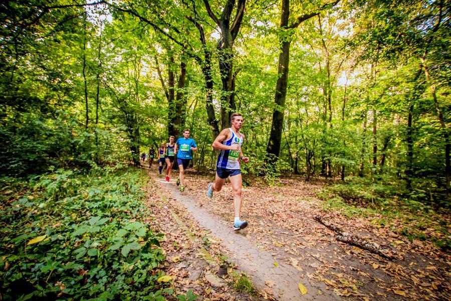 Baneasa Autumn Trail Run 2016