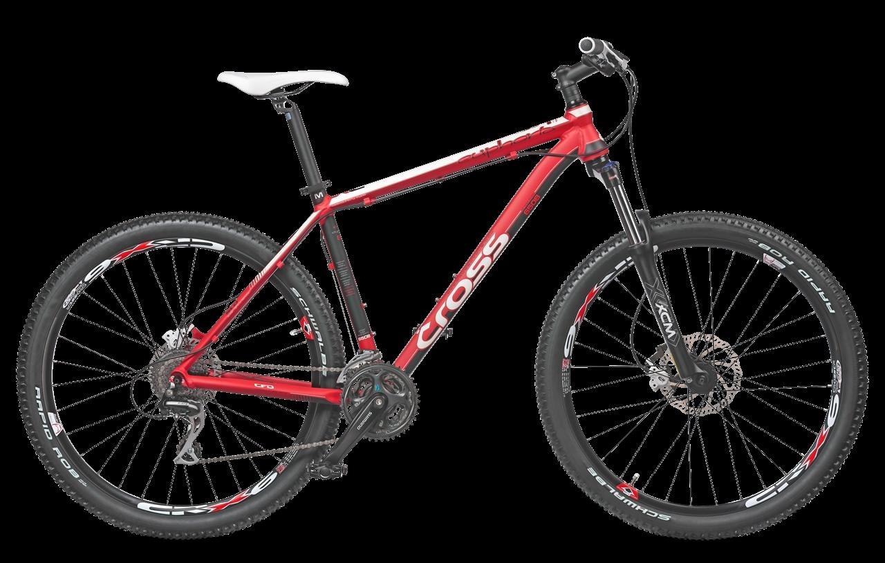 0014837_bicicleta-cross-euphoria-g24