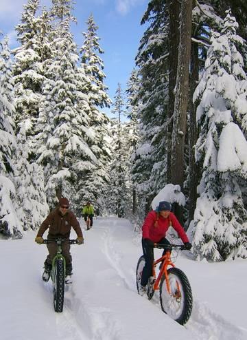 Biciclete pentru zapada special adaptate