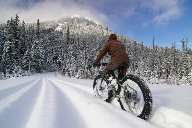 Biciclete pentru zapada