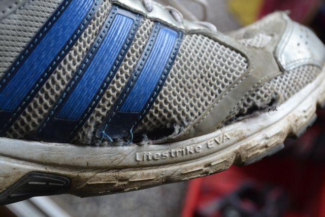 Adidas Duramo after