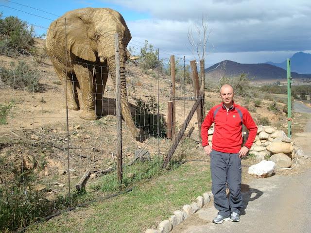 Andrei Rosu, Africa de Sud