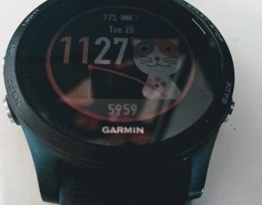 Garmin Forerunner 935 - face