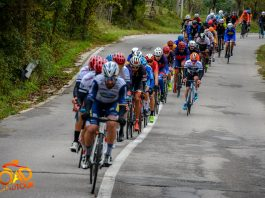 Road Grand Tour - The Wall 2020 - pluton